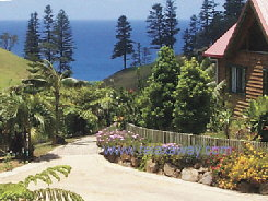 Tintoela, Norfolk Island - Click to enlarge